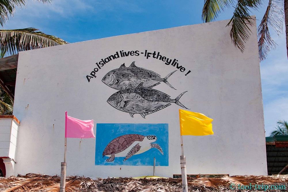 apo turtle wall post
