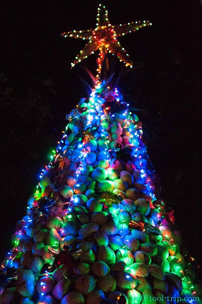 christmas tree coco