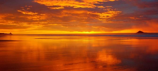 Ile du Sud: Dunedin et péninsule d'Otago