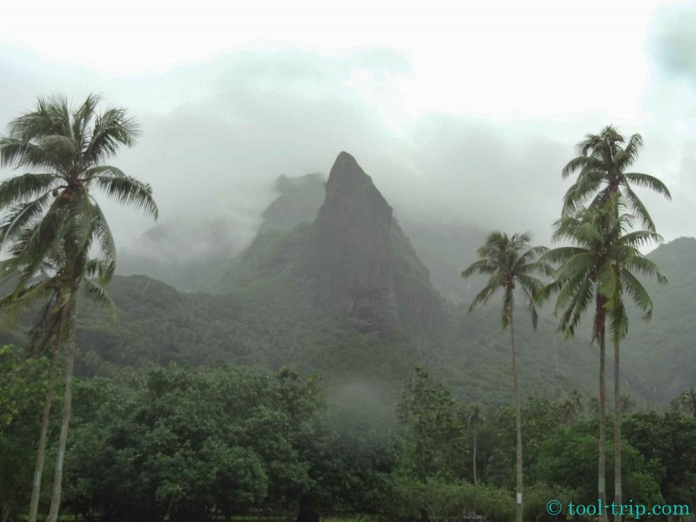 Montagne brume