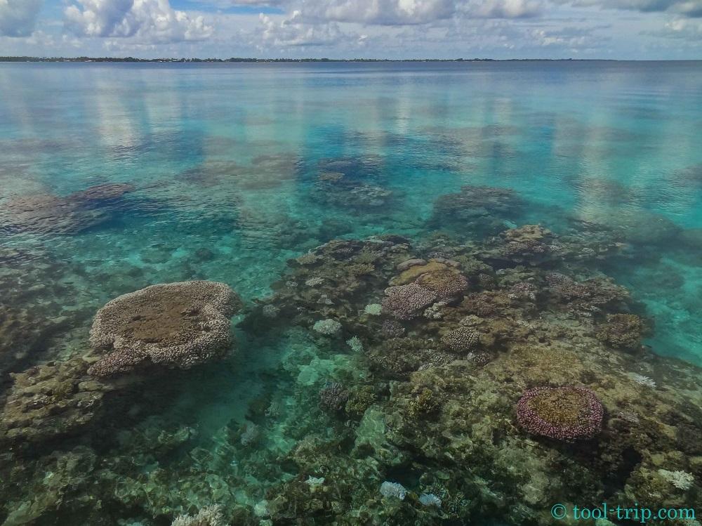 coralgardenairport