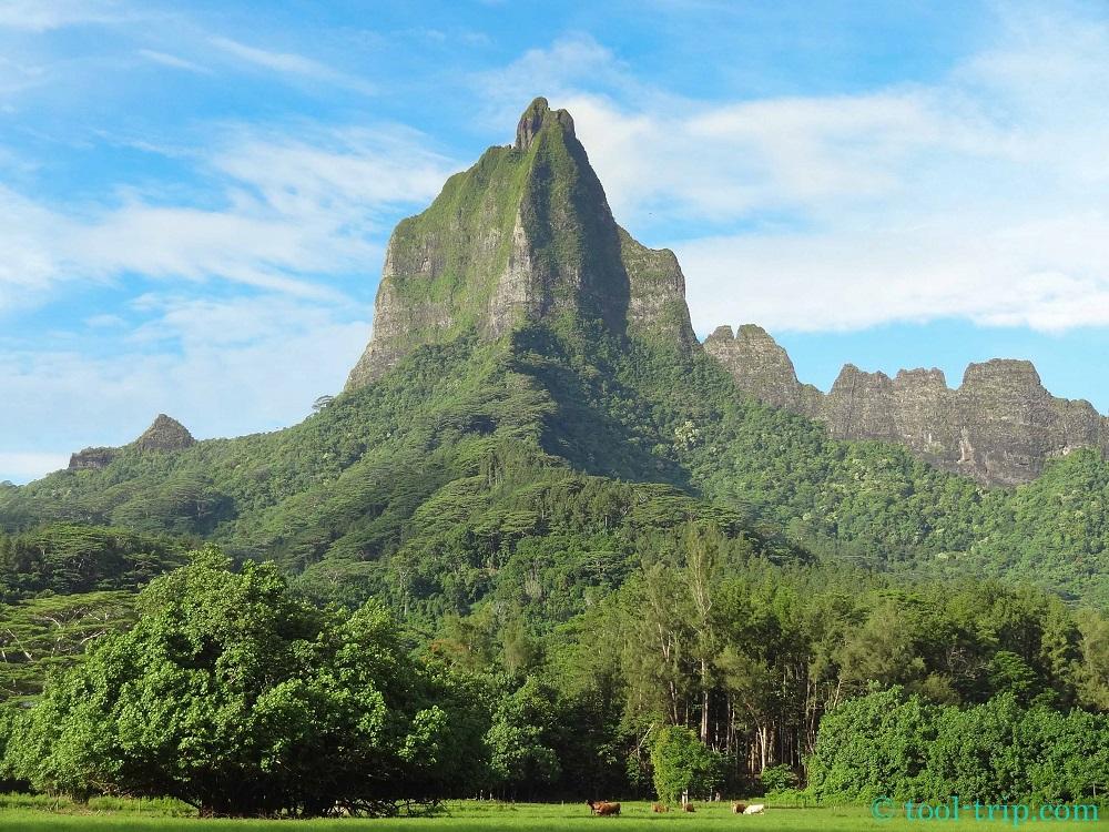 Mont Moorea