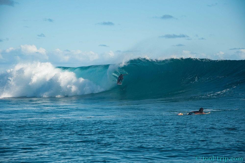 Surfer 2-2