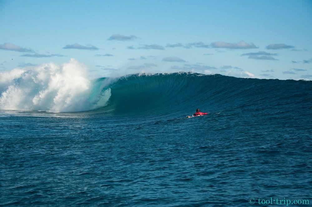 Surfer 4-2