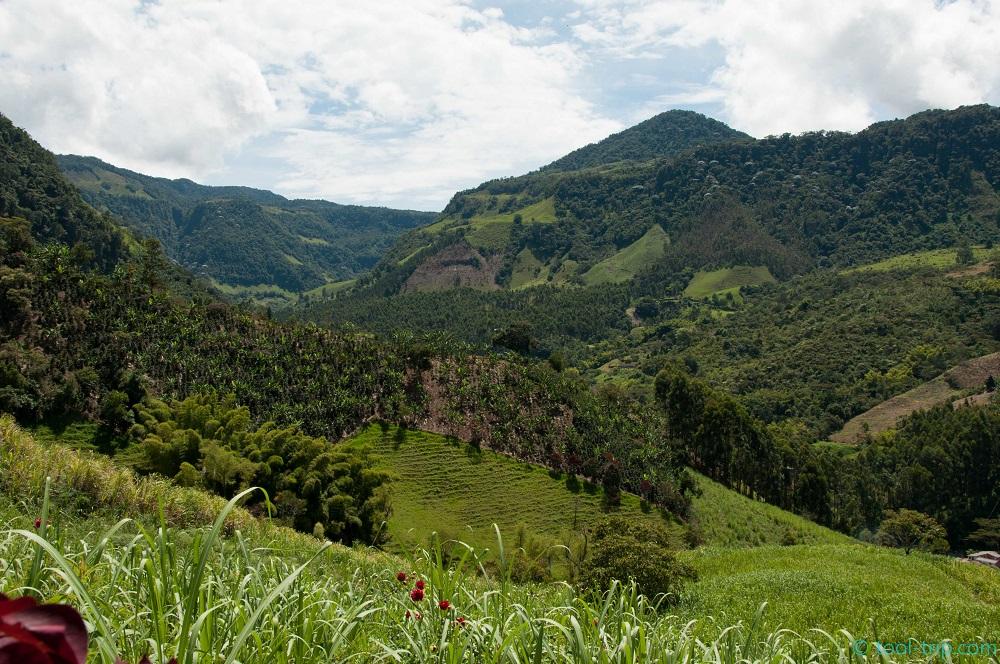 Jardin Le Village Enchante Des Montagnes D Antioquia Tool Trip