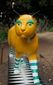 Gato yellow and blue