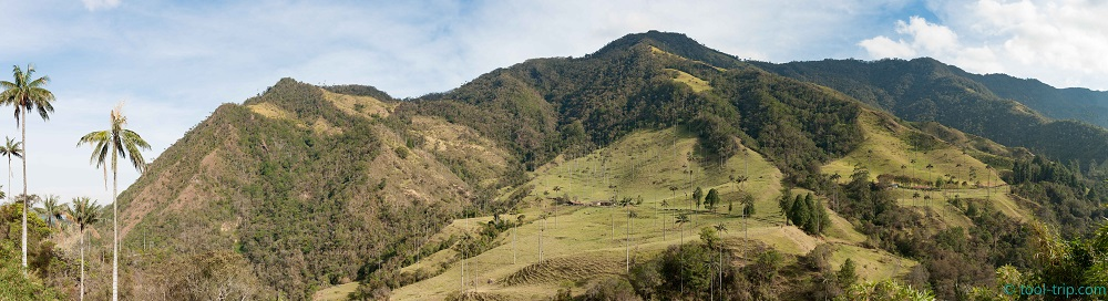 cocora valley in sunshine