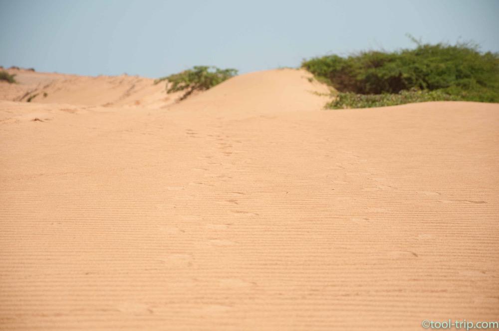 footsteps-sand