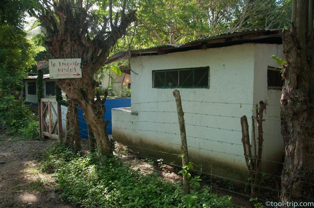 iguana-hostel
