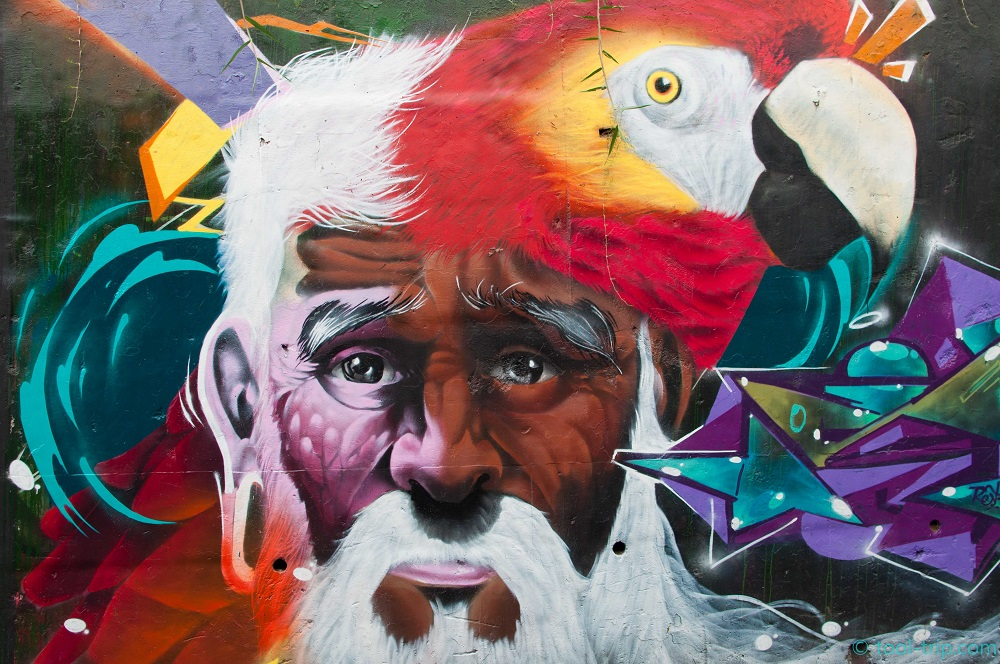 medellin-graffi-parrot-and-man