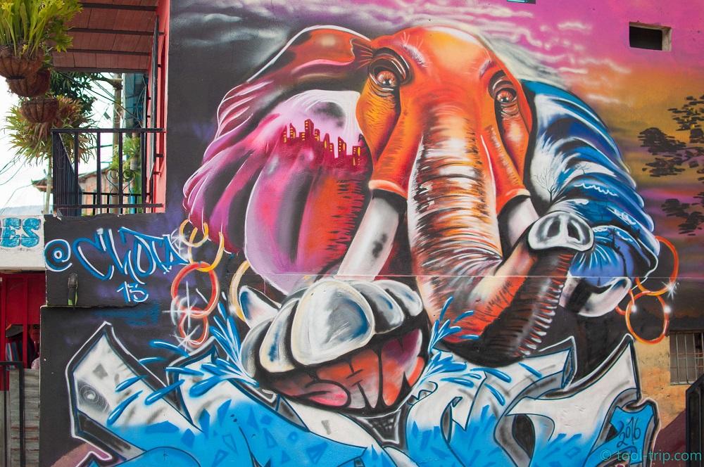 medellin-graffiti-eelephant