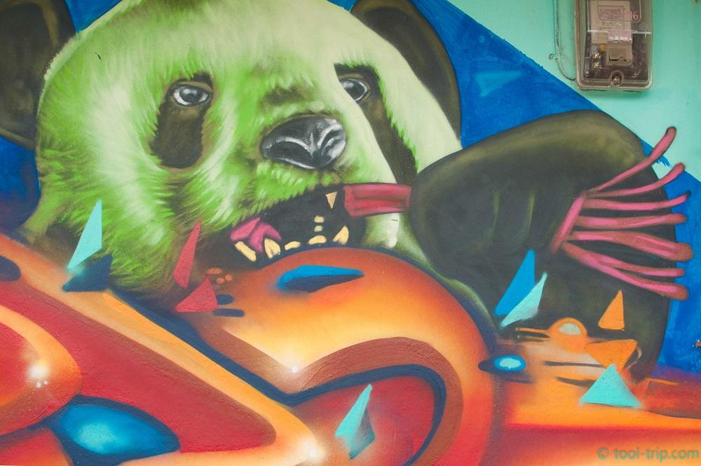 panda-graffiti