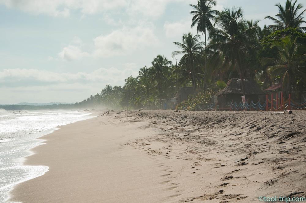 playa-palomino-mist