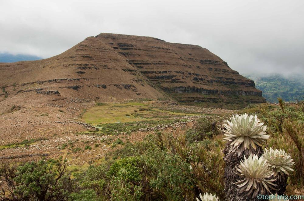 paramo-mountain